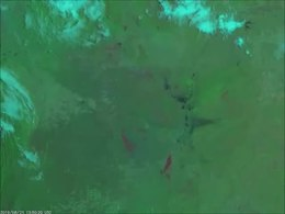 Ficheiro:NOAA Satellites - Fires in the -AmazonRainforest are continuing to burn. Here, -GOESEast zoomed in on burn scars in Bolivia, Brazil, and Paraguay via Day Land Cloud Fire RGB on August 22, 2019. More imagery-.webm