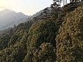 Nainital Landscape.jpg