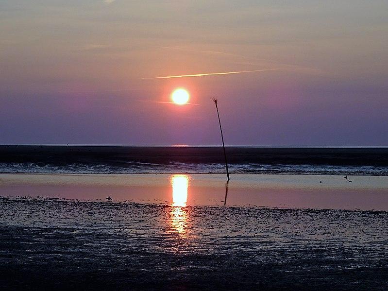 File:Nationalpark Niedersächsisches Wattenmeer - Spiekeroog - Abendstimmung - westlich vom Damenpad (7).jpg