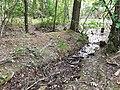 Naturdenkmal Roßbrunnen bei Werbach 5.jpg