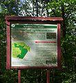 Nature reserve Dabrowa Radziejowska01.jpg