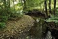 Nature reserve Niva Olšového potoka in summer 2014 (8).JPG