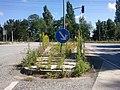 Naturschutzgebiet--1.jpg