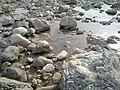Navidhand new 409 - panoramio.jpg