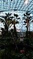 Navy Pier Atrium Gardens (14670956390).jpg