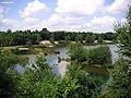 Neu Wulmstorf - Baggersee - panoramio.jpg