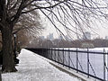 New York. Central Park. Snowy (2797315661).jpg