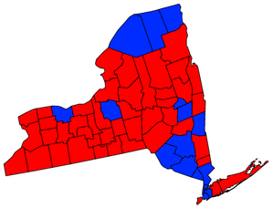 New York Attorney General election, 2010.png