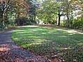 Newcastle-under-Lyme greenery - panoramio.jpg