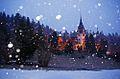 Ninge la Castelul Peles.JPG