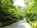 Nisonin - Kyoto - DSC06209.JPG