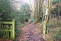 North Downs Way enters Howfield Wood - geograph.org.uk - 1588129.jpg