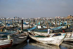 Nouadhibou – Travel guide at Wikivoyage