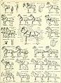Nouveau Larousse illustré - dictionnaire universel encyclopédique (1898) (14594685839).jpg