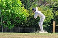 Nuthurst CC v. Henfield CC at Mannings Heath, West Sussex, England 052.jpg