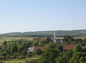 Valea Crișului - Image: Nyari panorama