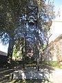 O-K Sint-Vituskerk Hilversum Klokkenstoel.jpg