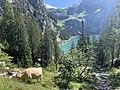 Oeschinen Lake in the Bernese Oberland.jpg