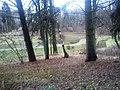 Okolice sanatorium Borkowo - panoramio.jpg