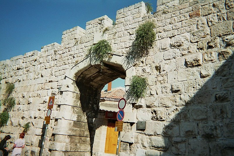 File:Old Jerusalem New Gate Caper.JPG