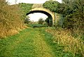 Old railway near Saintfield - geograph.org.uk - 1122161.jpg