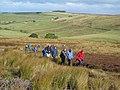 On Allendale Moor - geograph.org.uk - 611499.jpg