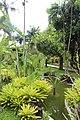 Orchid Garden Bali Indonesia - panoramio (2).jpg