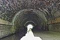 Otters Tunnel 3.jpg