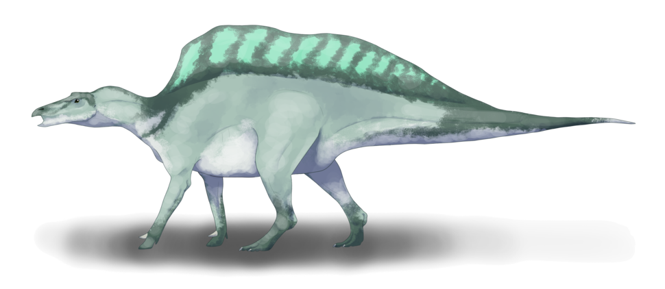 Ouranosaurus nigeriensis restoration