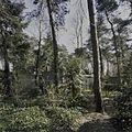 Overzicht - Bergeijk - 20396826 - RCE.jpg