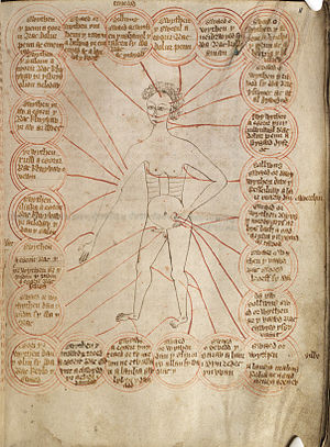Bloodletting - A chart showing the parts of the body to be bled for different diseases, c.1310–1320