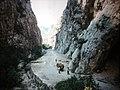 PAKLENICA 1983 - panoramio (5).jpg