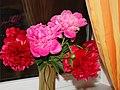 Paeonia lactiflora flower bouquet.jpg