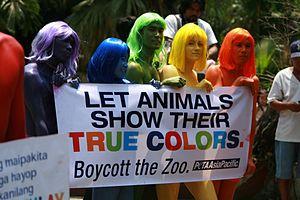 English: PETA AsiaPacific anti-zoo demonstration