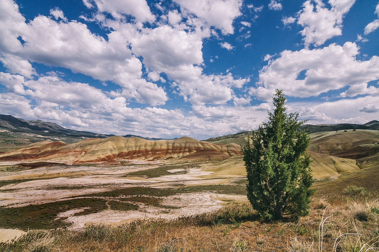 John Day Fossil Beds National Monument Size