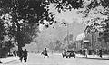 Palmiarnia Ogród Saski przed 1938.jpg