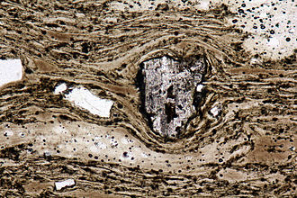 Pantellerite - Thin section of ignimbrite of pantelleritic composition from Pantelleria, Italy