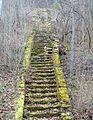 Parc-Curis-escalier-vieux.JPG