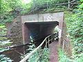 Parchim Wocker Bahnbrücke 2013-06-28 11.JPG