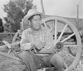 Parker, Arizona. Henry Welsh, Mojave Indian and chairman of the tribal council of the Colorado Rive . . . - NARA - 536247.jpg