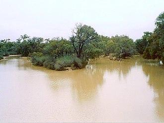 Paroo River - Paroo River at Wanaaring, New South Wales