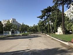 Paseo de Recoletos, Madrid, 2017-08-02, Triplecaña.jpg
