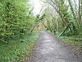 Path through the woods at Amberley Working Museum - geograph.org.uk - 1245572.jpg