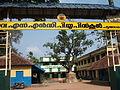 Pattathanamgovtsndpupschool.JPG