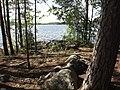 Pausplats skogsudde Savojärvileden utsikt 2019.jpg