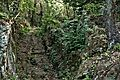 Photo Paolo Villa VR 2016 (VT) F0164025tris San Giovenale, resti etruschi, città, tombe a tumulo e tagliata.jpg