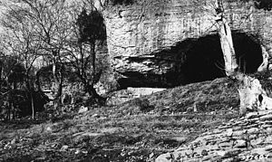 Cave-in-Rock State Park - Cave-in-Rock in a 1936 photograph by the U.S. Department of Agriculture, Division of Forestry, looking similar to how it looked in the 18th and 19th centuries. Original photo caption: Cave at Cave-In-Rock, used by river pirates in 1790's