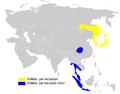 Phylloscopus coronatus distribution map.png