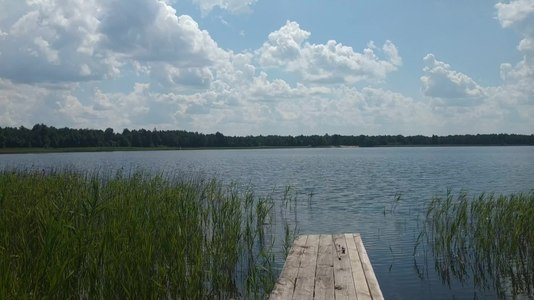 File:Pidrichchia Kamin-Kashyrskyi Volynska-Dobre lake natural monument in 2020.ogv