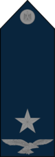 Pilot Officer - Egyptian Air Force rank.png